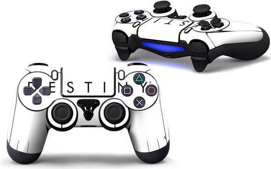 Destiny PS4 controller skin